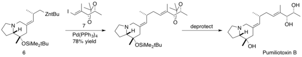 Synthesis of Pumiliotoxin B