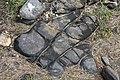 Schwarzes Gestein auf Great Bernera.jpg