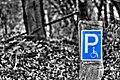 Schwerbehindertenparkplatz - Parkplatz - Rollstuhlfahrer - Sascha Grosser.jpg