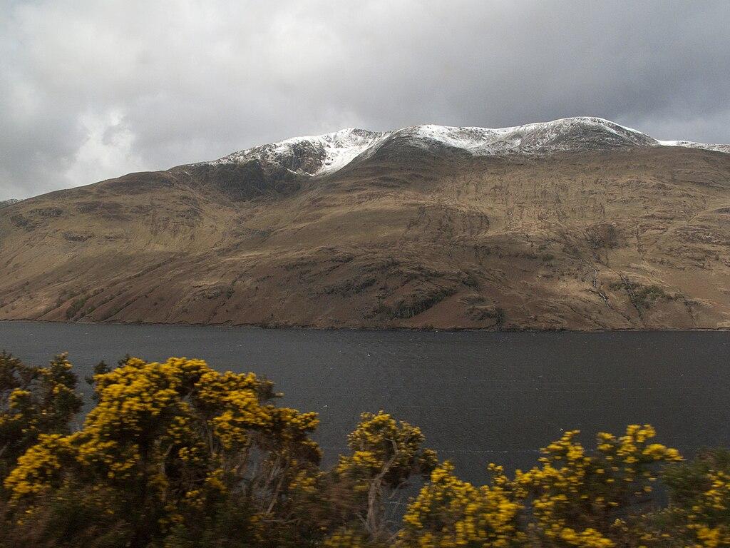 online dating scotland highland cougars