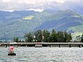 Seedamm 'Dreiländereck' - Zürichsee - Dampfschiff Stadt Rapperswil 2012-07-15 17-29-48 (P7000).JPG