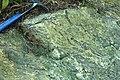 Serpentinite (East Dover Ultramafic Body, Ordovician; roadcut southwest of East Dover, Vermont, USA) 2.jpg