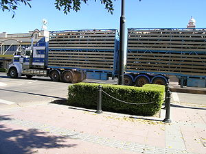 Sheep In A B Double Truck Moree NSW Australia