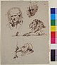 Sheet of Studies- Three Male Heads, a Lion and a Mouse MET 1989.286.3.jpg