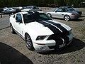 Shelby Mustang GT 500 (3550265470).jpg