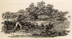 "A History of British Birds - One of Bewick's uncaptioned tail-pieces, miniature woodcuts showing country life. Here, shooting from a hide, at end of ""Sabine's Snipe"""