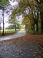 Shugborough Drive - geograph.org.uk - 1534302.jpg
