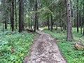 Slovenský Raj (agost 2012) - panoramio.jpg
