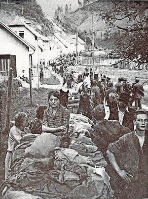 Bleiburg repatriations - Slovene Home Guards and civilians on the Tržič-Ljubelj road near Austria