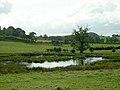 Small Pond Near Balgray Reservoir - geograph.org.uk - 245394.jpg