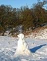Snowman in wintry meadow - geograph.org.uk - 1626655.jpg
