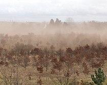 Soil erosion, Southfield - geograph.org.uk - 367917.jpg