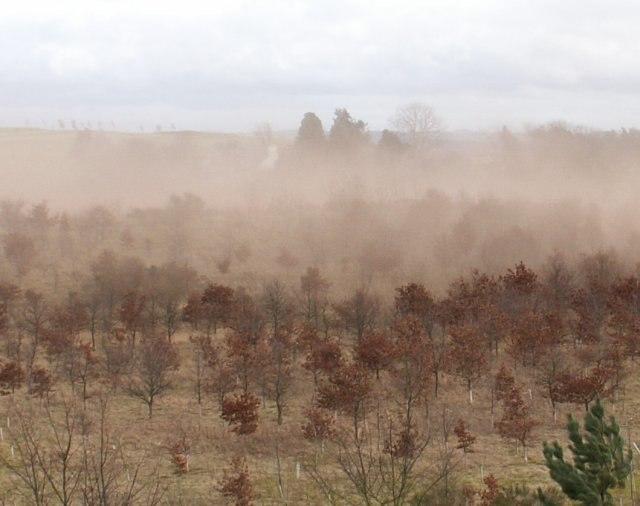 Soil erosion, Southfield - geograph.org.uk - 367917