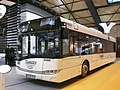 Solaris Urbino 12 Transdev - RNTP 2011-1.JPG