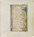 Songs of Innocence and of Experience- On Anothers Sorrow MET DR402.jpg