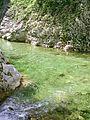Soutok Rakitnice a Gruscanske rijeky, tunka.jpg