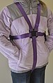 Special Child Harness and Reins Designed for Older (Early Adolescent) Children with Special Behavioral Needs (1).jpg