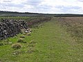 St Oswald's Way near West Harle - geograph.org.uk - 1274119.jpg