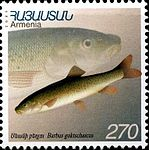 Stamp of Armenia m177.jpg