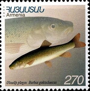 Stamp of Armenia m177.jpg
