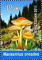 Stamps of Kyrgyzstan, 2011-32.jpg