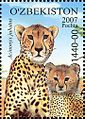 Stamps of Uzbekistan, 2007-49.jpg