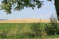 Staré vinohrady od pracké silnice 2.jpg