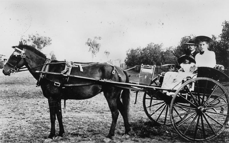 File Statelibqld 1 103339 Family In A Horse Drawn Buggy In