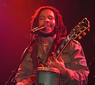 Grammy Award for Best Reggae Album - Five-time award winner Stephen Marley (three times as a member of the band Ziggy Marley and the Melody Makers) in 2007