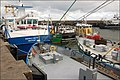 Sterns and bows, Bangor - geograph.org.uk - 529762.jpg