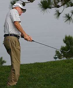 Steve Flesch 2008 US Open cropped.jpg