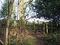 Stile at the Edge of Meriden Shafts Wood - geograph.org.uk - 336219.jpg