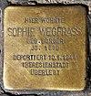 Stolperstein Weitlingstr 24 (Rumbg) Sophie Wegfrass.jpg
