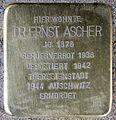 Stolpersteine Krefeld, Dr. Ernst Ascher (Hohenzollernstraße 24).jpg