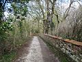 Stour Valley Path, Brundon, Sudbury. - panoramio (1).jpg