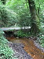 Stream, Solomon's Wood - geograph.org.uk - 1381951.jpg