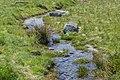 Stream in Mount Cook Village 02.jpg