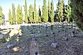 Sulmona -Cimitero- 2014-by-RaBoe 017.jpg