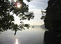 Sun comes up on the Cleddau - geograph.org.uk - 970413.jpg