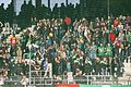 Supporters SV Ried1.jpg