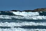 Surf's up - Newquay (15364972130).jpg