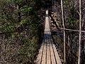 Swingbridge-fall-creek-falls-tn1.jpg