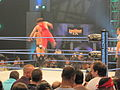 TNA Slammiversary Sting vs. Mr. Anderson Stingsplash.jpg