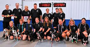 Touch N Go - first flyball team to ever run un...