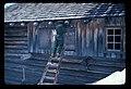 Taking down snow shutters. July, 1984. slide (b45e3920beb1428ea276630e576f6d10).jpg