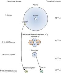 Tamaño relativo de las diferentes partículas atómicas.