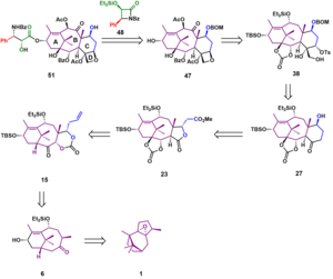 Holton Taxol total synthesis - Retrosynthetic analysis for  the Holton Taxol total synthesis.