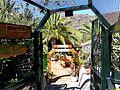 Teneriffa – Tenogebirge – Masca – Restaurante Chez Arlette - panoramio.jpg