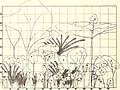 The Caribbean forester (1941) (20347710699).jpg