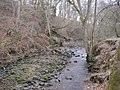 The Ham Burn near Whitley Mill - geograph.org.uk - 1737895.jpg